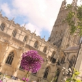 Gloucester Cathedral's picture