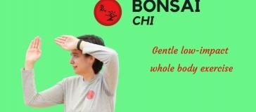 Bonsai Chi - Gentle low impact, whole body exercise