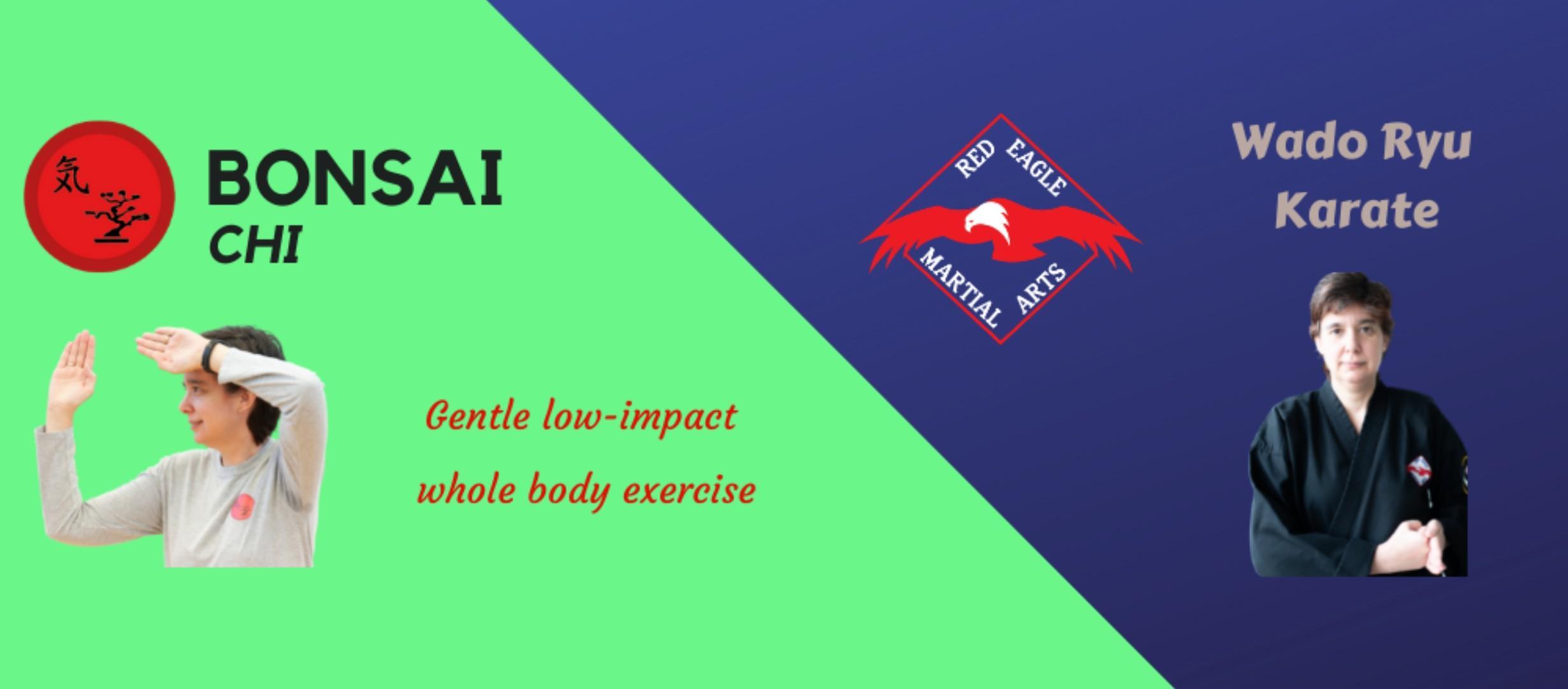 Traditional Wado Ryu karate & Bonsai Chi, gentle low-impact exercise