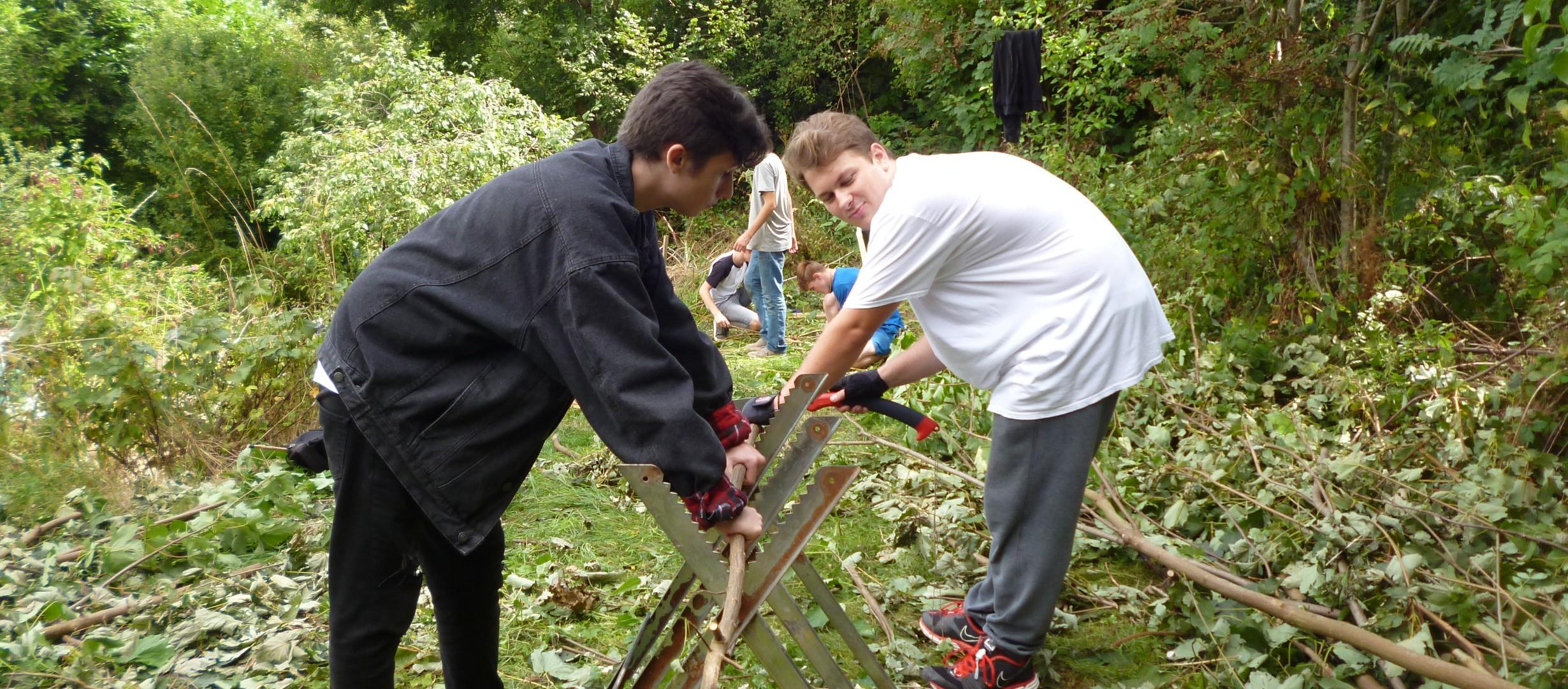 Two young people are holding a thin tree trunk on a metal structure in a woodland clearing